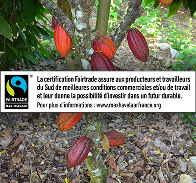 fairtrade_max_havelaar_certification