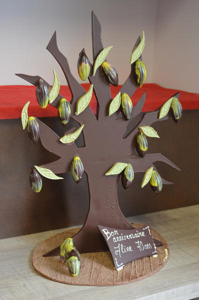 saveurs_et_nature_cacaoyer_montage_chocolat